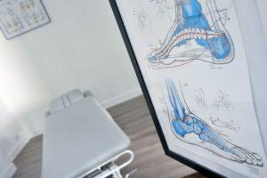 cabinet saint-cyprien, toulouse, réflexologie podale, Lilian Gautheron, planche anatomique