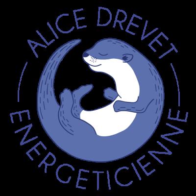 logo_web_RVB